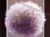 Blumen Ball